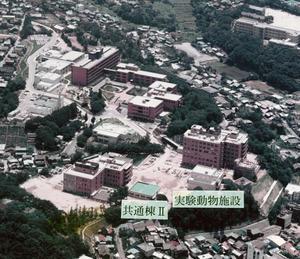 1981_06_NIBB.jpg