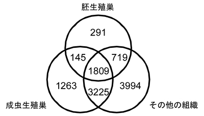 060902fig2.jpg