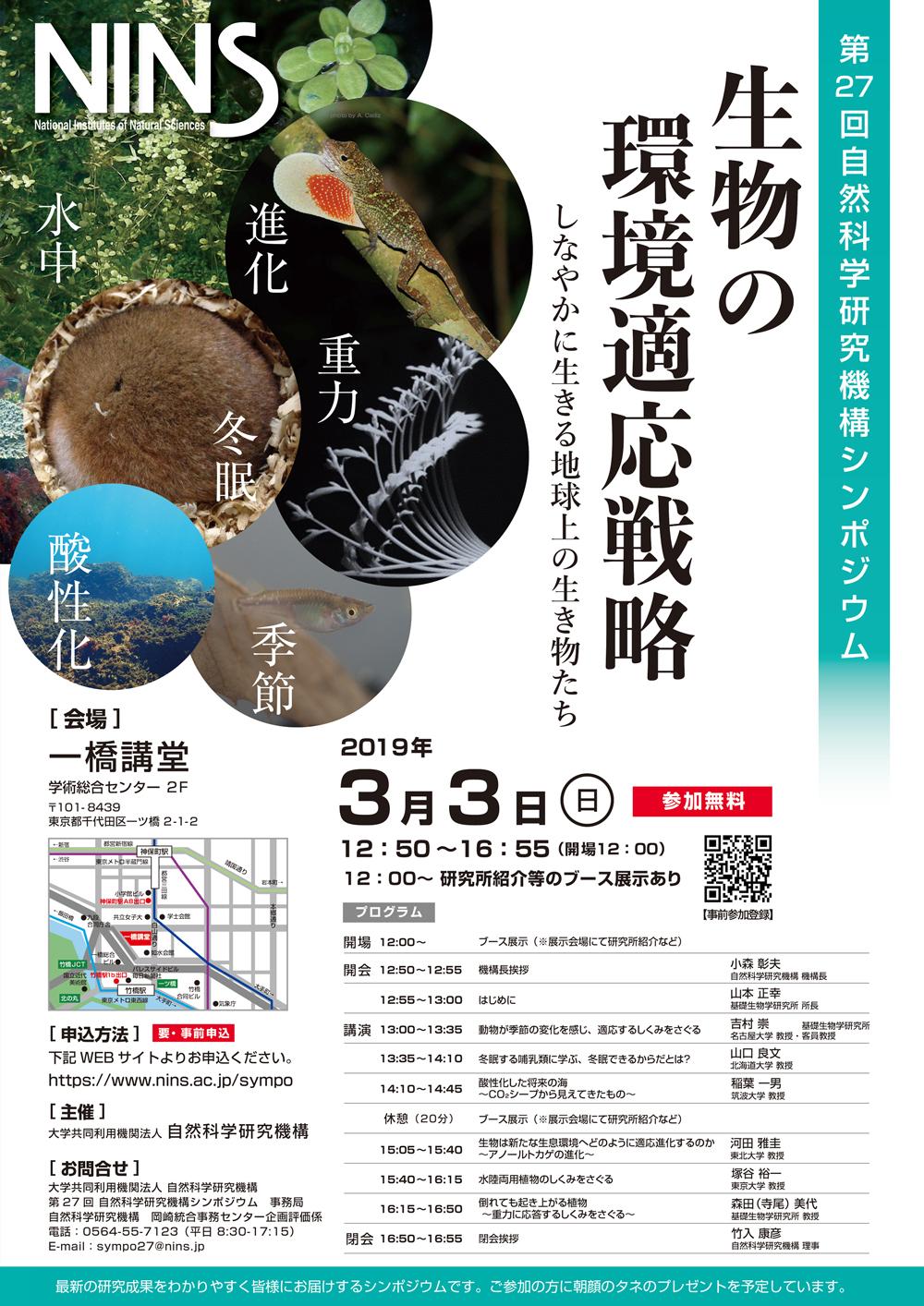 NINS27th_poster.jpg
