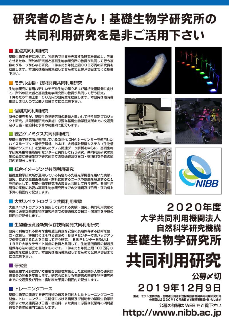 nibb_2020_poster.jpg