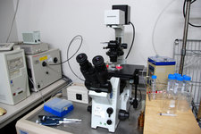 倒立顕微鏡1−2