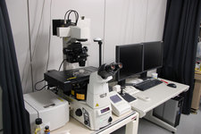 倒立の共焦点顕微鏡2