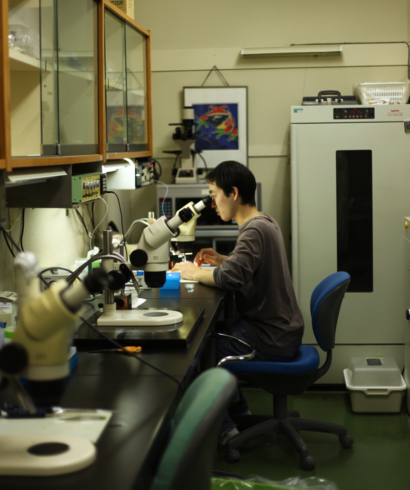 Injection Room in Prof. Ueno's Lab