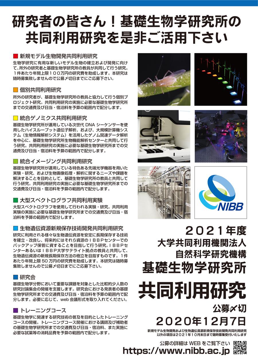 nibb_2021_poster.jpg