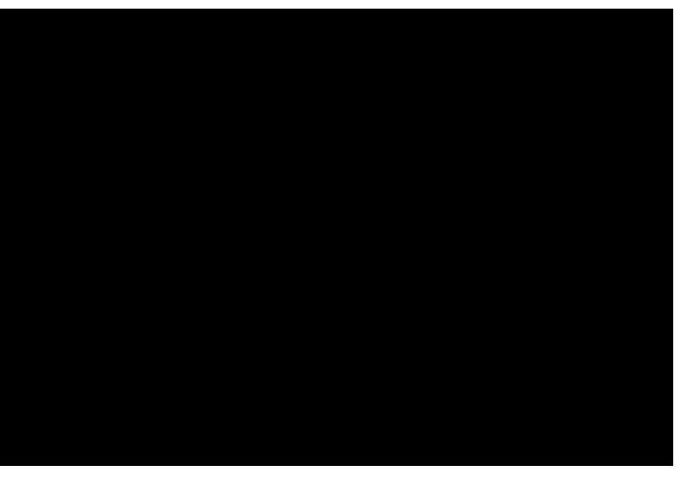 バラ群/フトモモ目