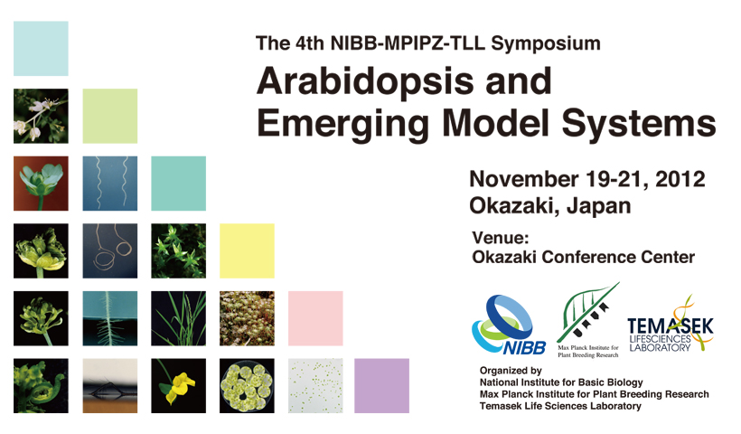 The 4th NIBB-MPIPZ-TLL Symposium