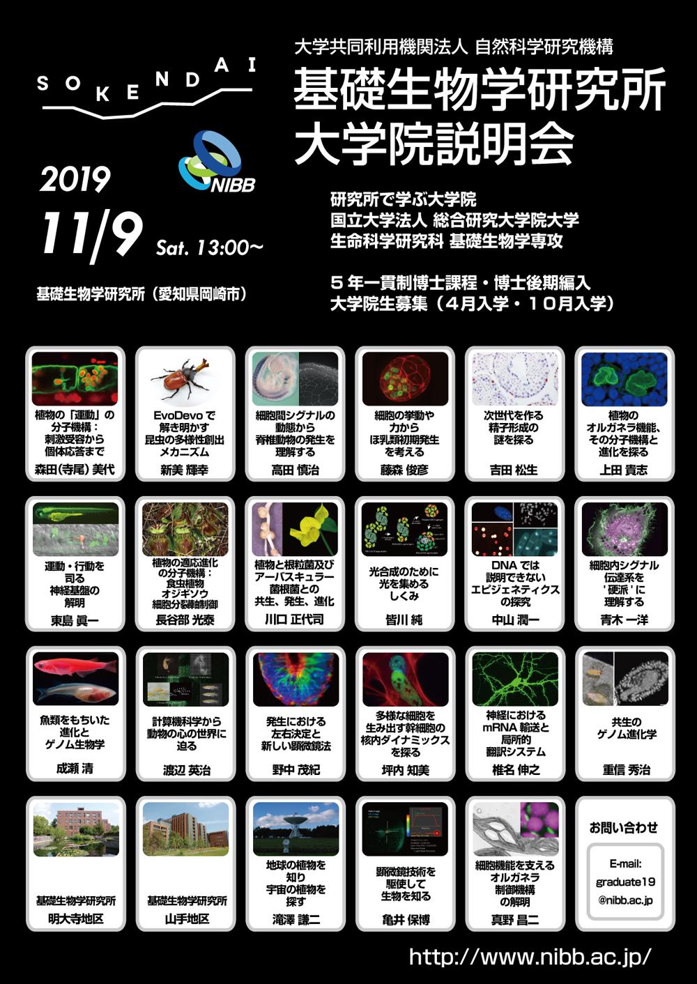 2019-11.jpg
