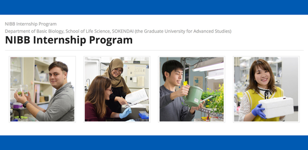 NIBB_internship2021.jpg