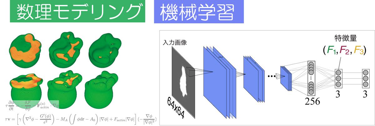 2020_shinomiya_main_visual.jpg
